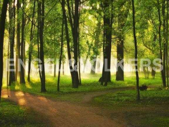 Элитные квартиры на . Санкт-Петербург, 2-ая Березовая аллея 13-15. Парк на Каменным острове