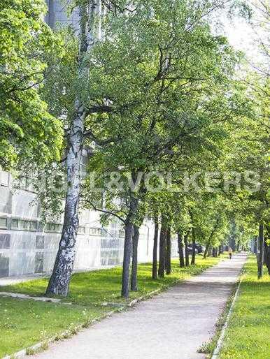 Элитные квартиры на . Санкт-Петербург, Морской пр., 15. Прогулочная аллея рядом с домом