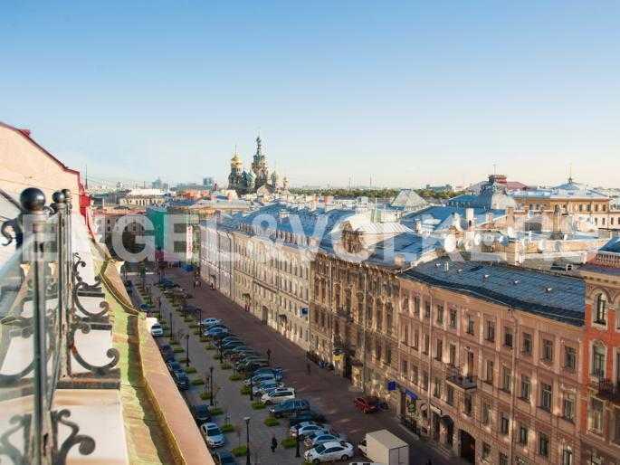 Вид с террасы на Спас-на-Крови и перспективу Мал. Конюшенной ул.