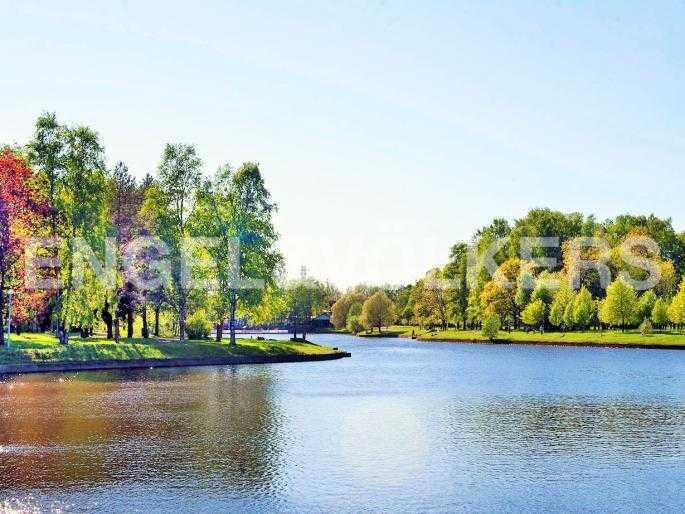 Элитные квартиры на . Санкт-Петербург, Южная дорога, 5. Вид со стороны комплекса на Южный пруд