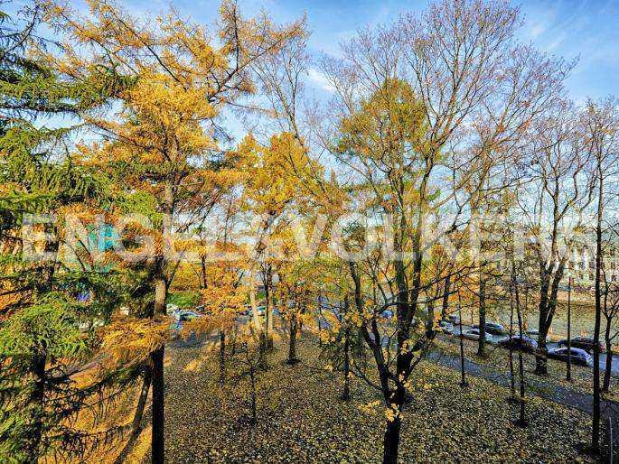 Элитные квартиры в Центральный р-н. Санкт-Петербург, наб. реки Фонтанки, 1. Вид на реку Фонтанку из кабинета