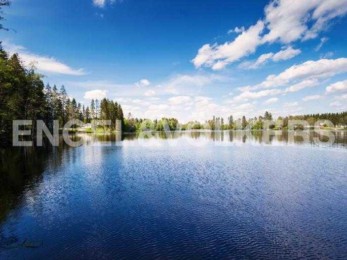 Элитные квартиры в Выборгском районе. Ленинградская область, Озеро Лебяжье. Озеро Лебяжье