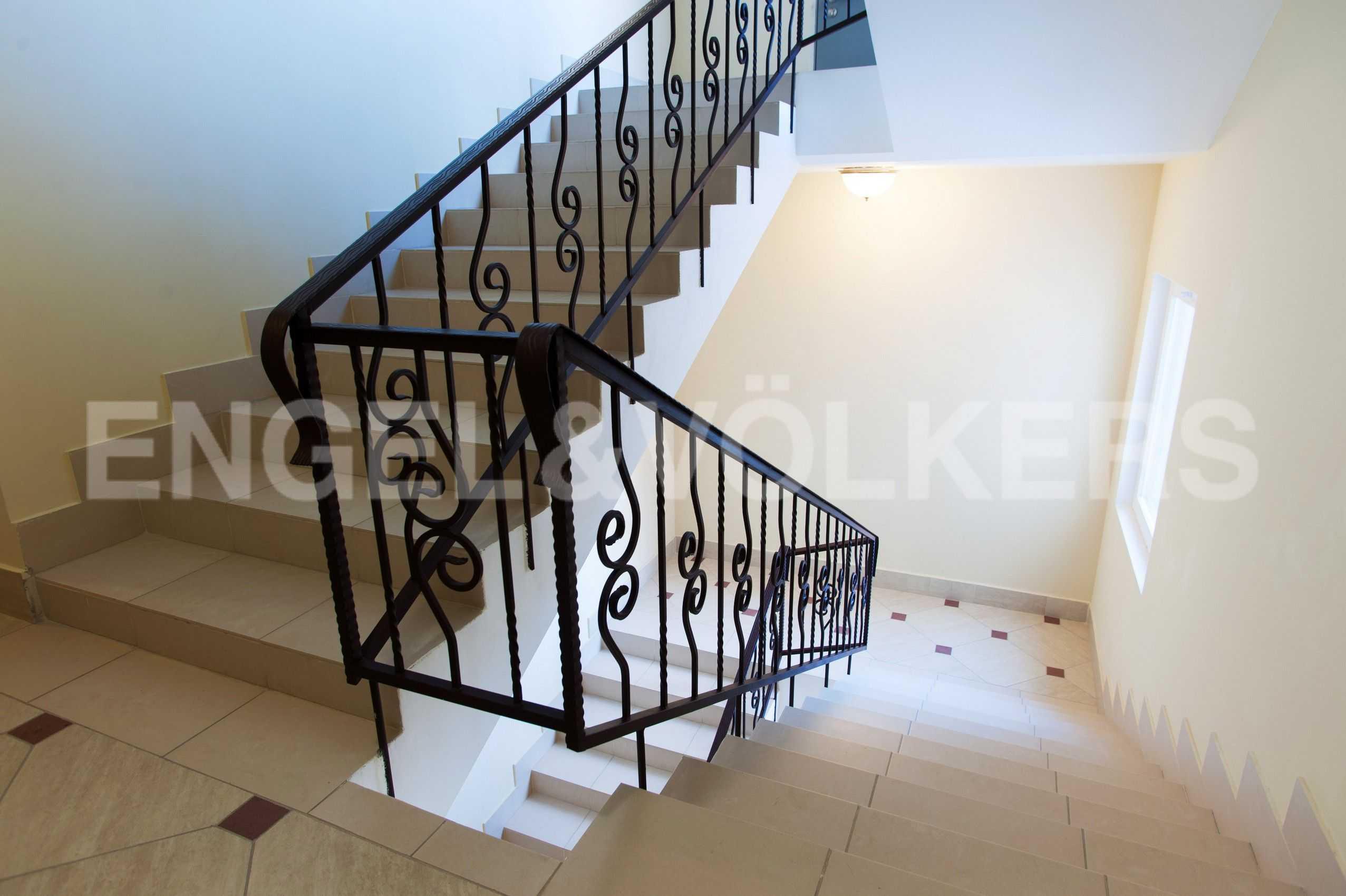 Лестница в парадной