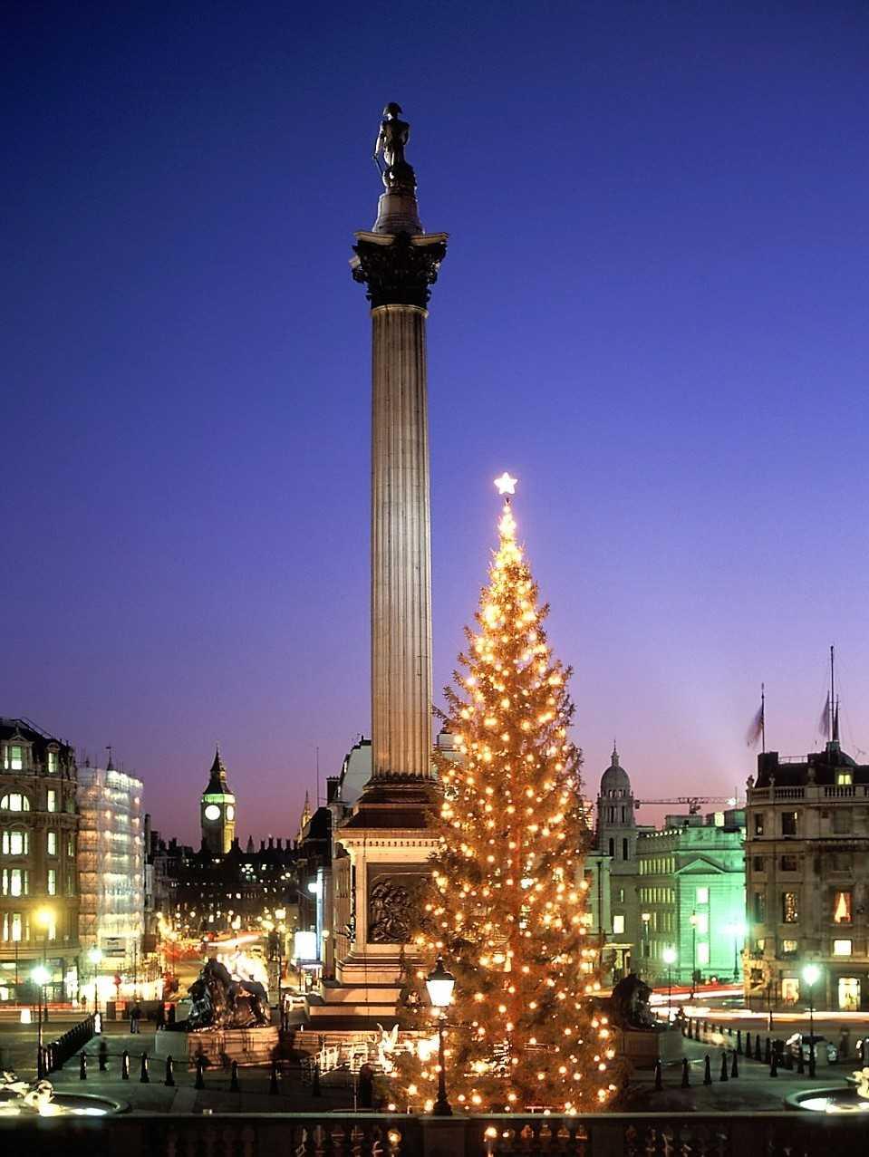 Рождественская елка. Лондон