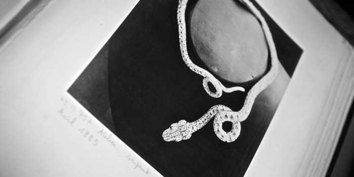 https://evspb.ru/wp-content/uploads/2016/03/Boucheron-serpent.jpg