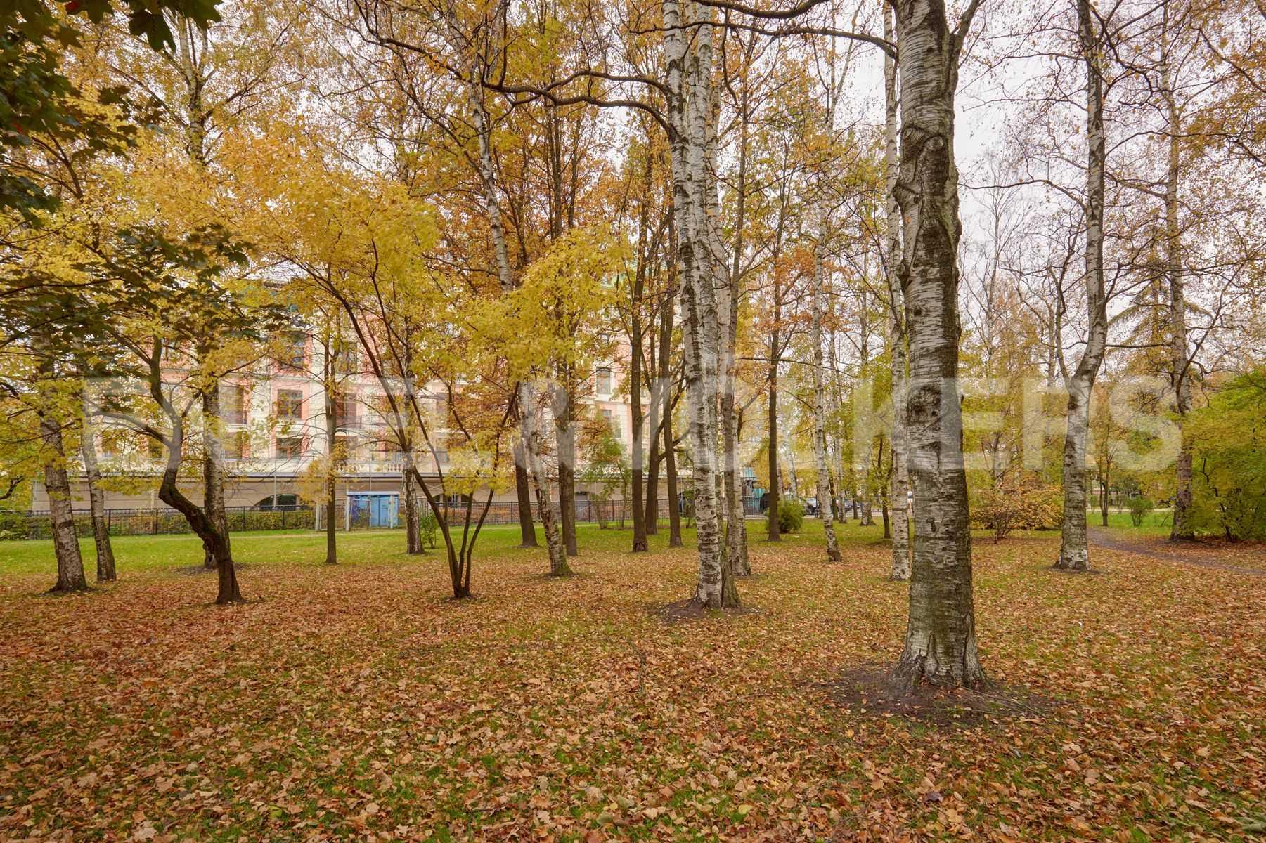 Элитные квартиры на . Санкт-Петербург, Динамо,12. Территория возле дома