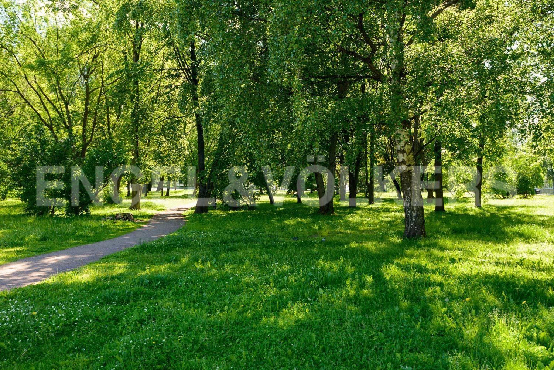 Элитные квартиры в Петроградском районе. Санкт-Петербург, ул. Ждановская, 10. Зелень сквера перед домом