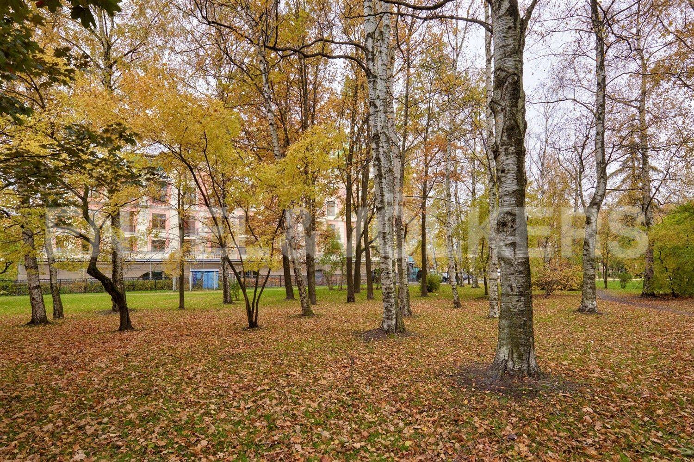 Элитные квартиры на . Санкт-Петербург, Динамо, 12. Сквер перед домом