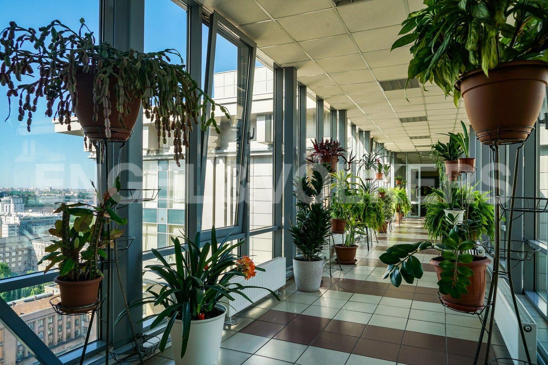 Элитные квартиры в Василеостровском районе. Санкт-Петербург, 27-я линия В.О., 16. Галерея на 18 этаже