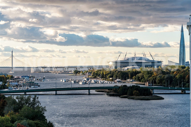 Стадион Зенит-арена на ладони
