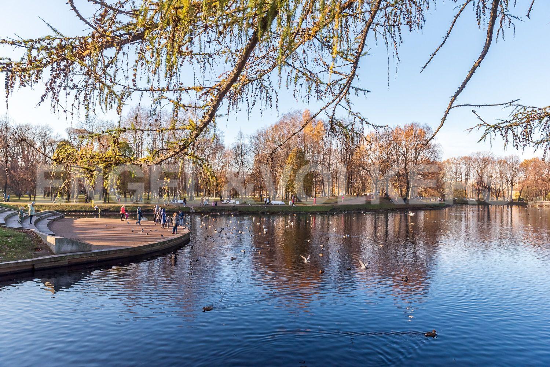 Элитные квартиры в Центральном районе. Санкт-Петербург, Шпалерная, 52А. Пруд в Таврическом саду