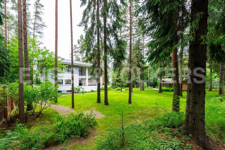 Вид на дом со стороны леса