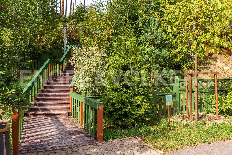 Деревянная дорожка с освещением в окружении зелени