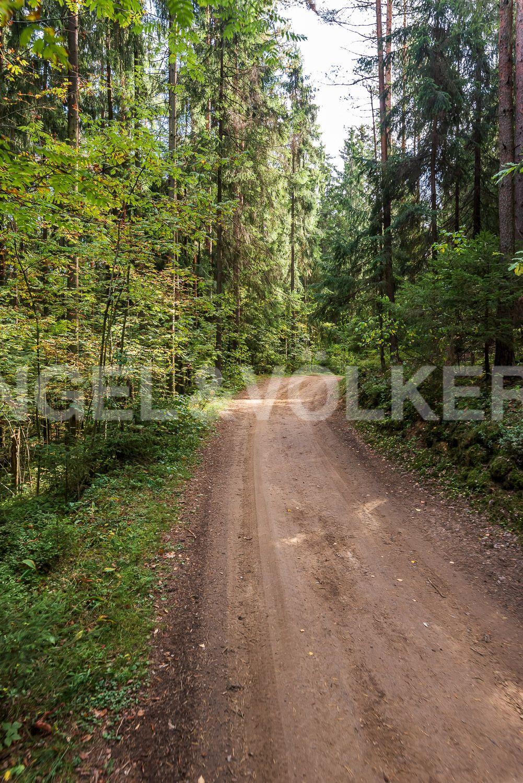 Дорога из послека к озеру в 5-и минутах пешком