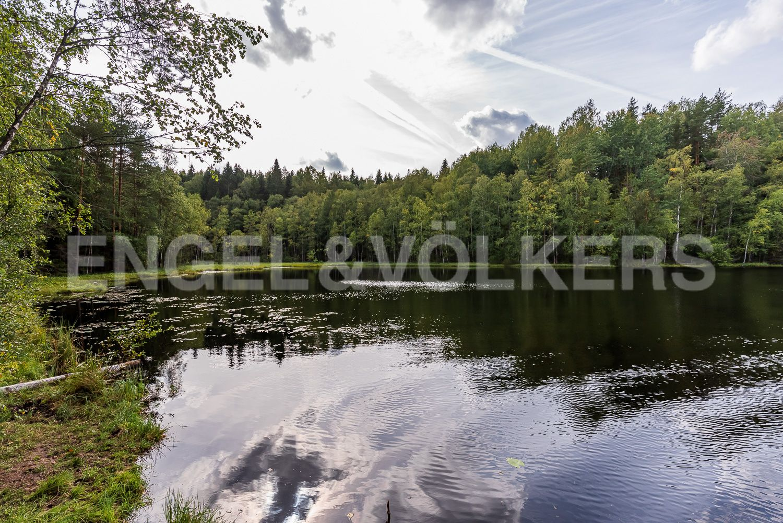 Спокойное и тихое озеро на территории заказника