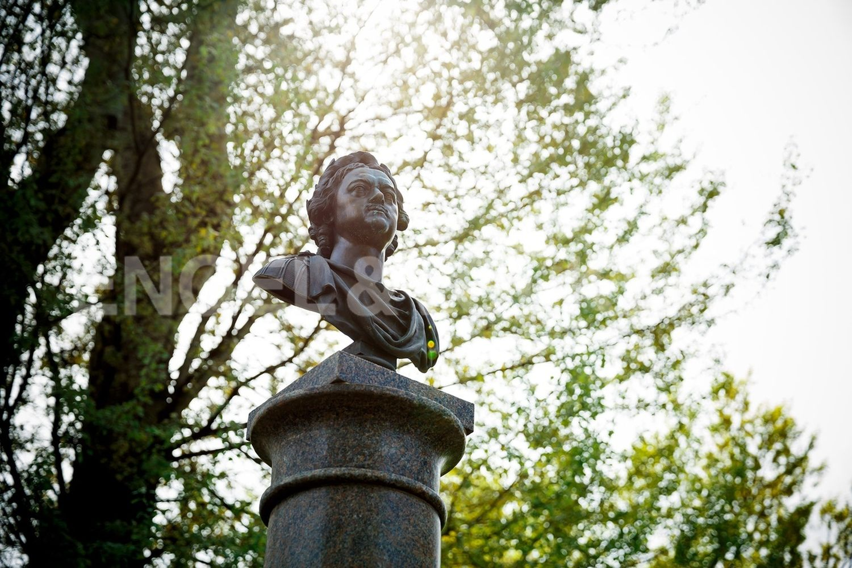 Элитные квартиры на . Санкт-Петербург, наб. Гребного канала, д. 1. Памятник Петру 1 на территории комплекса