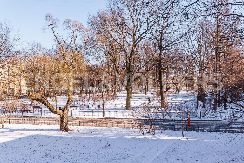 Элитные квартиры в Центральном районе. Санкт-Петербург, Кирочная, 31 к.2, лит. А. Вид из окон гостиной в сторону сада Салтыкова-Щедрина и Таврического сада