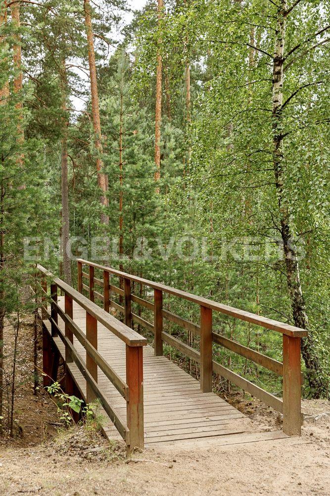 Рельефный лесной участок