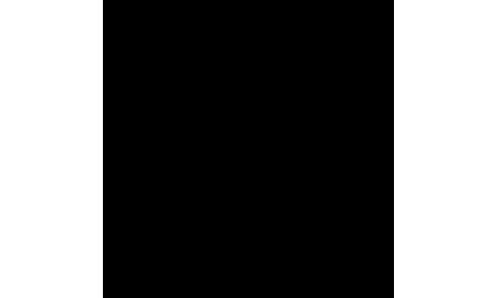 gostinichnyj-kompleks-premium-klassa-ladozhskaya-usadba