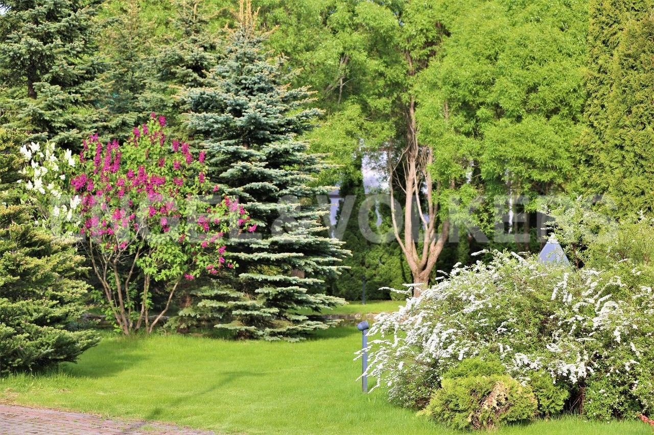 Ala Kirjola - хвойные и лиственные деревья
